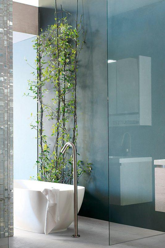 bagno feng Shui piante